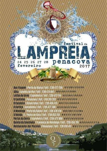 Festival da Lampreia Penacova 2017