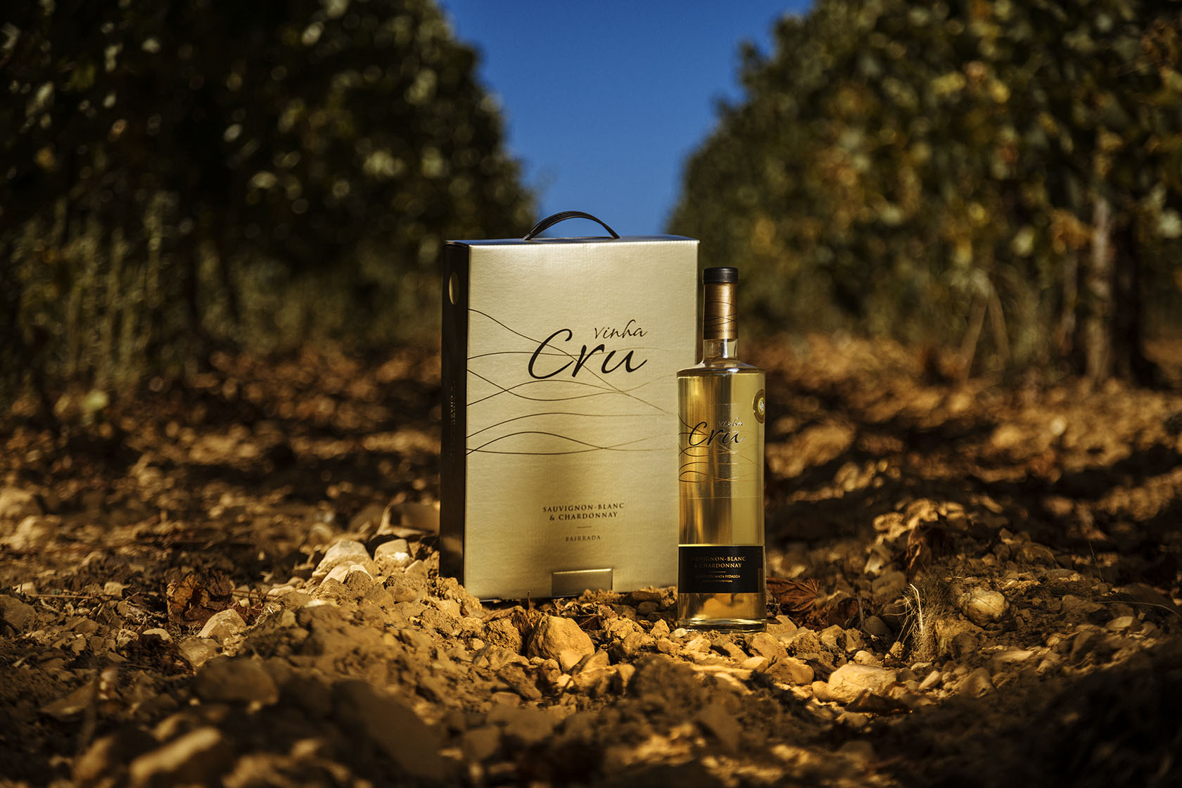 Lançamento de vinho Vinha Crú